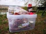 SFS Baits - WeekendBox RedTropic