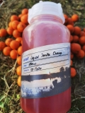 SFS Baits - Liquid SunriseOrange 500 ml