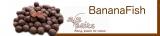 SFS Baits - BaitBox BananaFish inkl. Liquid + Powder